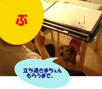 11_06_19_13_.jpg