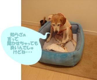 11_07_19_02.jpg