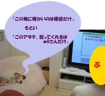 11_08_08_06.jpg