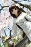 2012-04-08 No7391_R