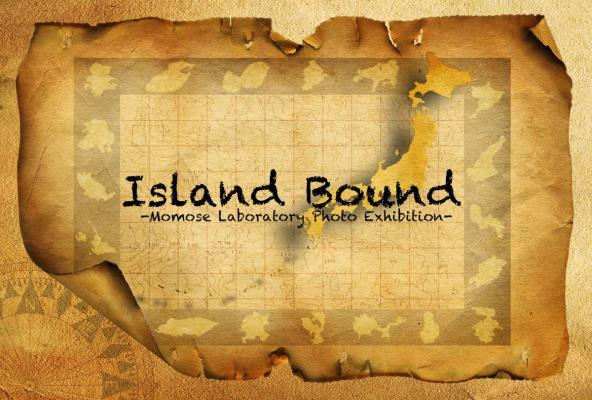 P hoto Island その1 00