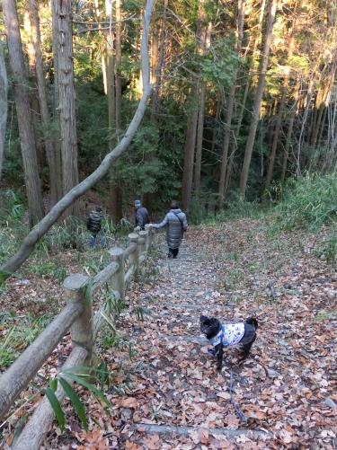 130101お散歩♪