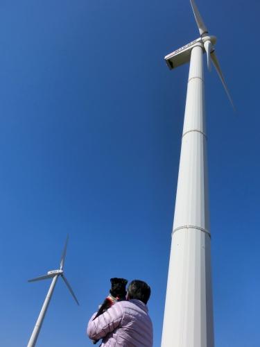 130210風車