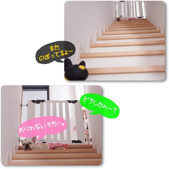 階段に・・