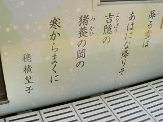 PAP_0355.jpg
