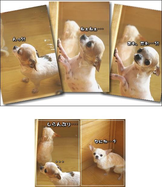 7_20100719053048.jpg