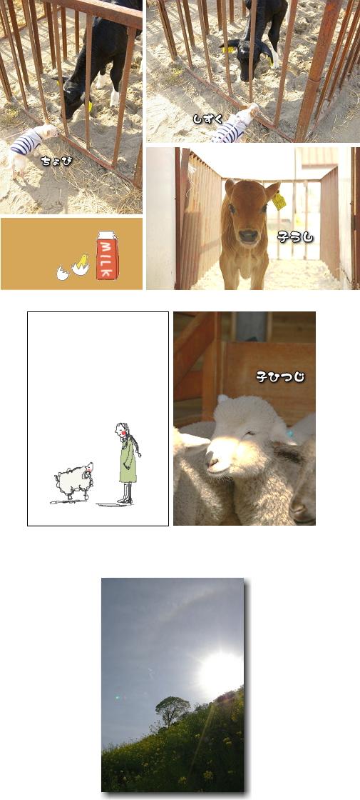 8_20100917022913.jpg