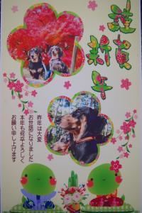 20120908+012_convert_20130101020957.jpg