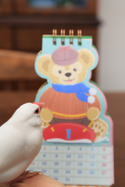 duffy no omiyage1