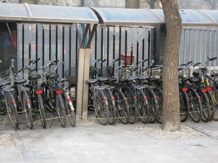 blog_レンタル自転車100210