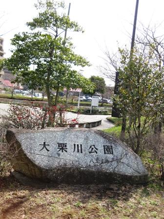 blog_大栗川公園130310