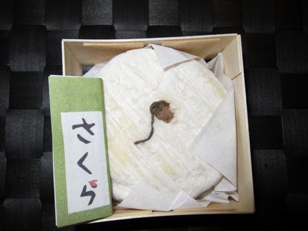 blog_さくらチーズ180310