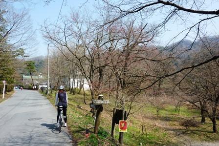 blog_荒川沿いの小道200310