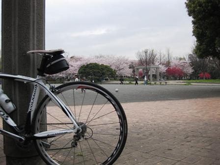 blog_川崎の公園100410