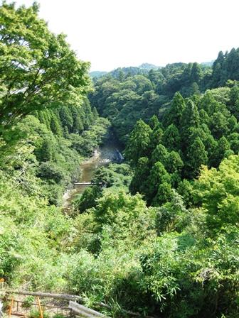 blog_養老乃瀧190910