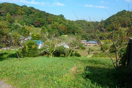 blog_柿木のある里山の風景061110