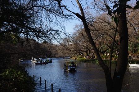 blog_井の頭公園231210