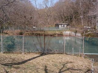 熊野神社番太池