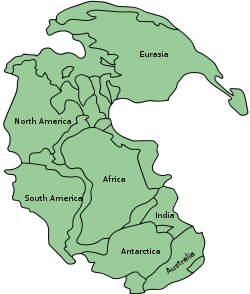 250px-Pangaea_continents_svg.png