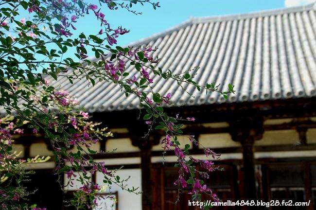 0914gangouji-4.jpg