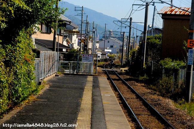 1018kaguyamaeki-1.jpg