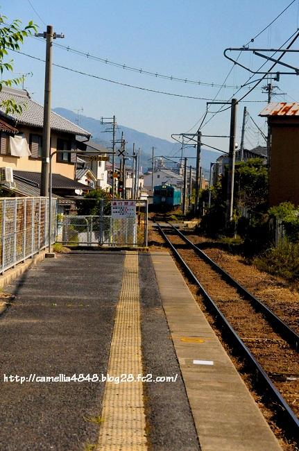 1018kaguyamaeki-10.jpg