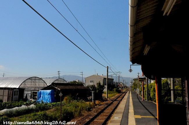 1018kaguyamaeki-15.jpg