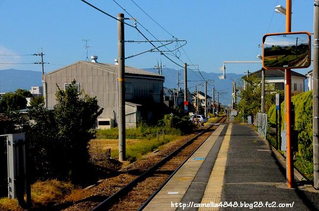 1018kaguyamaeki-2.jpg