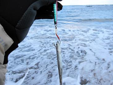 12月初釣行 積丹方面 寒・・・