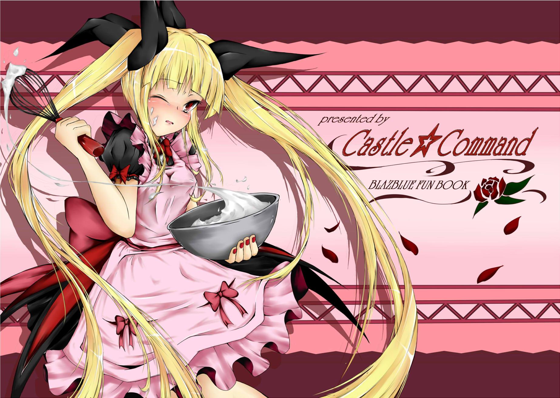 C79姫様本表紙統合 タイトルなし ブログ用