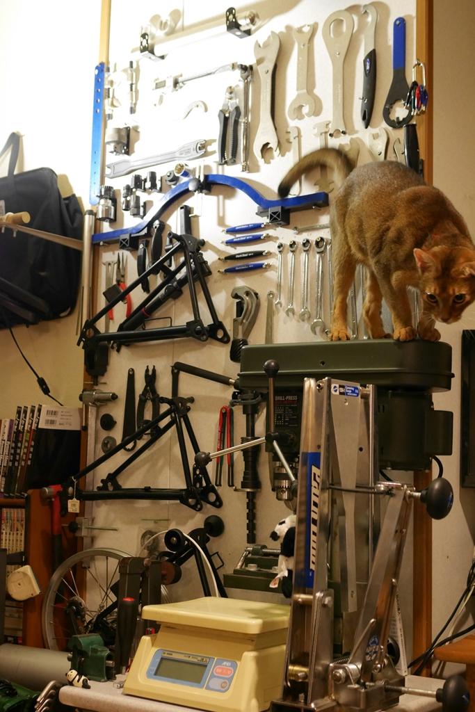 猫カフェ マグロ 自転車