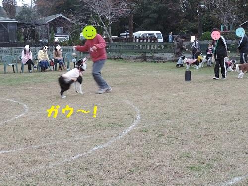 s-DSCN0456.jpg