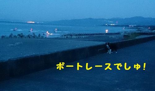s-IMG_20140928_185503.jpg