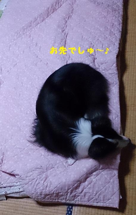 s-IMG_20141009_133447.jpg