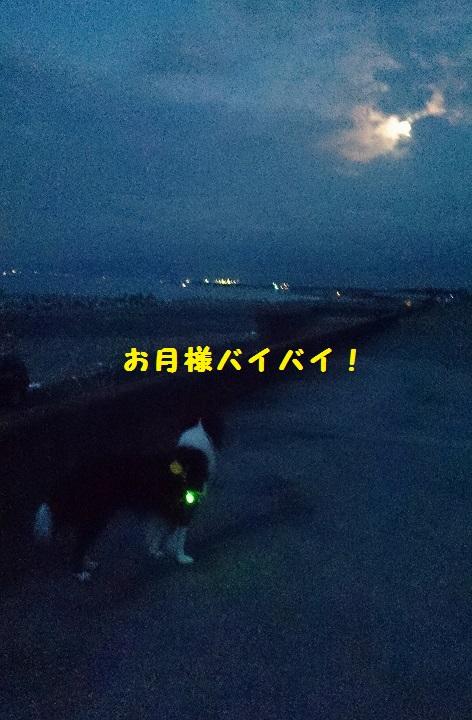 s-IMG_20141009_133552.jpg