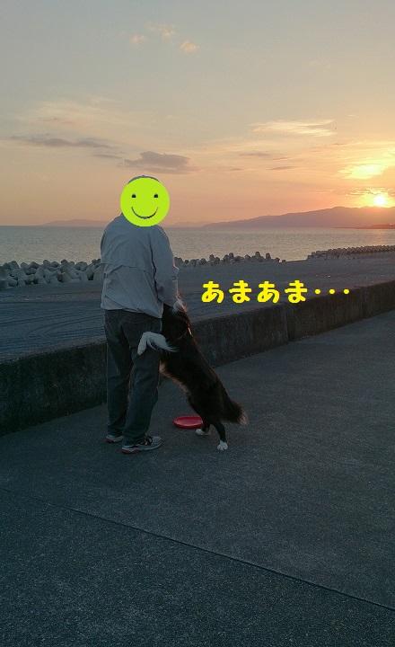 s-IMG_20141019_192516.jpg