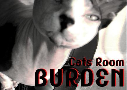 CatsRoomBURDEN