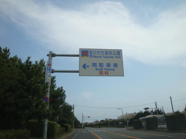 DSC01794.jpg