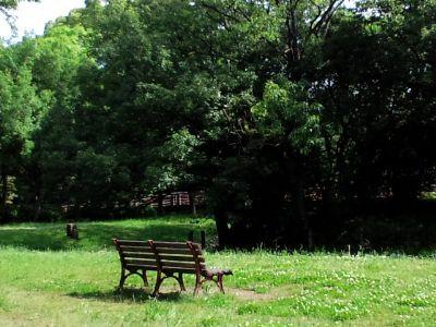 大仙公園20110525 02_400