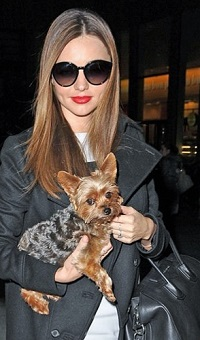 Miranda Kerr with her cute dog, Frankie