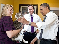 British Prime Minister David Cameron's housecat, Larry