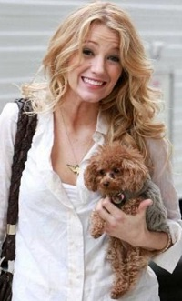 Celebrities-With-Pet-Dogs-09.jpg