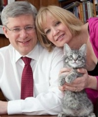 stanley-harper-canada-first-cat-600x430.jpg
