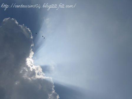 雲1IMG_1094