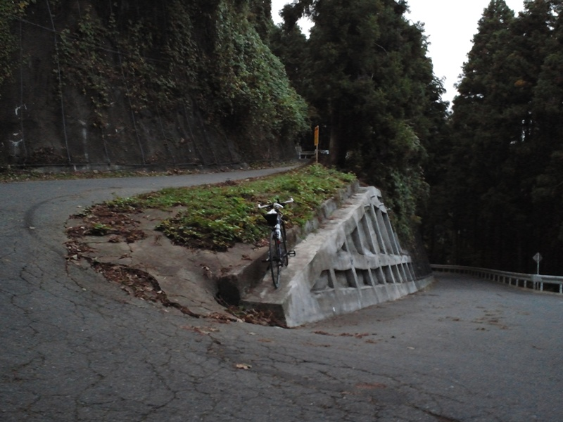 和田峠途中