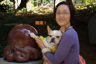 IMGP4609_20111105210939.jpg