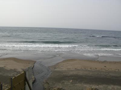 東海亭窓から見える景色