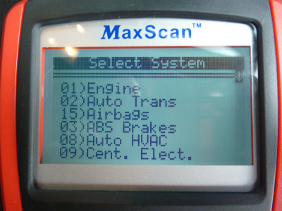 sP1010266.jpg