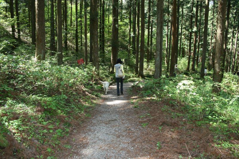 光源寺へハイキング