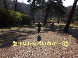 201101森林公園3